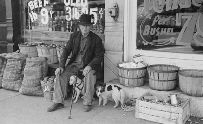 Пожилой мужчина и собаки перед продуктовым магазином, Робинсон, штат Иллинойс, 1940 год.