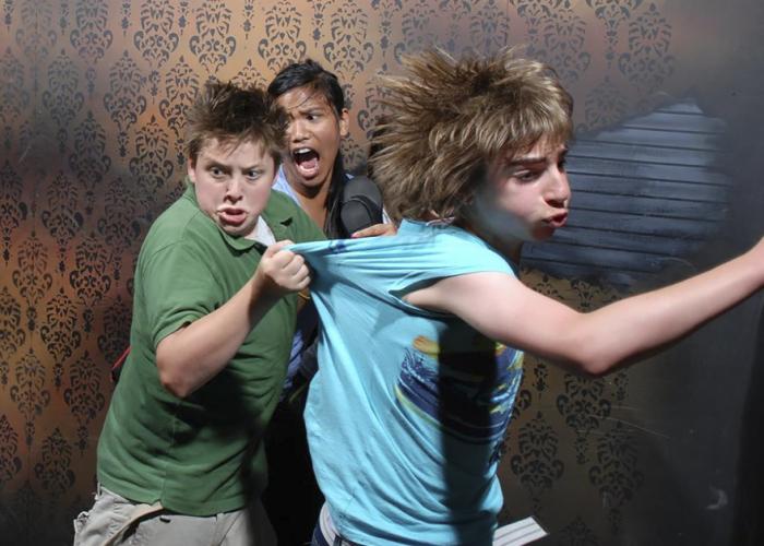Храбрецов, отважившихся пройти лабиринт, толкают и дергают актеры в устрашающем гриме, ослепляют вспышки красных огоньков и пугает зловещий шепот.