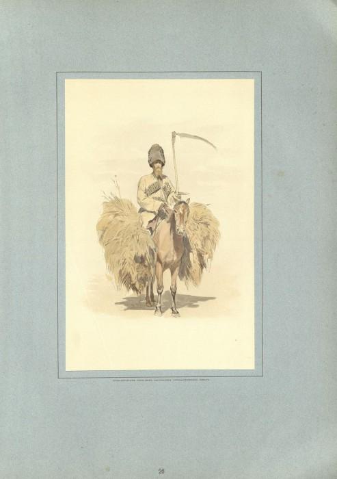 Казак отвечавший за корм для верховых и тягловых животных.