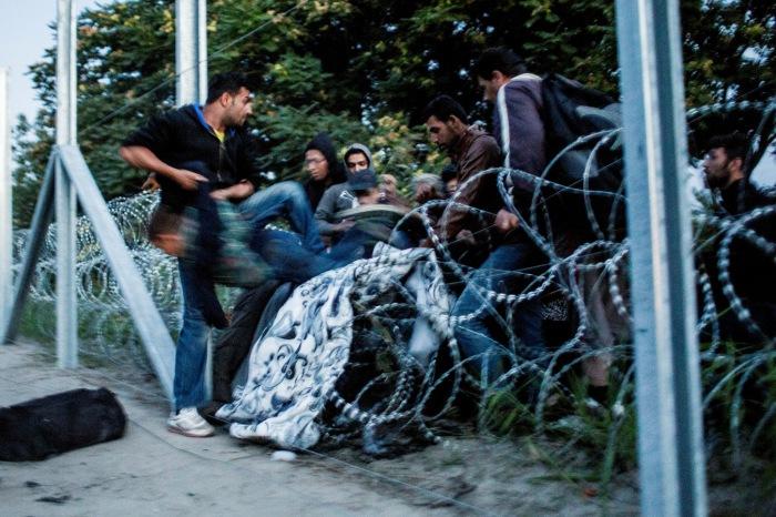 Перелаз через колючую проволоку. Автор фотографии: Балаш Бели, Венгрия, г. Икрень.