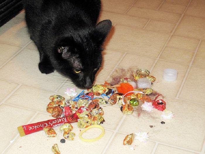 А где же мой подарок?