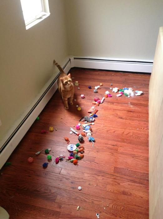 А я давно у вас спрашивал куда делись мои старые игрушки...