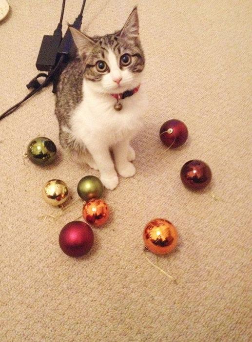 Я только хотел припрятать игрушки до следующего нового года.