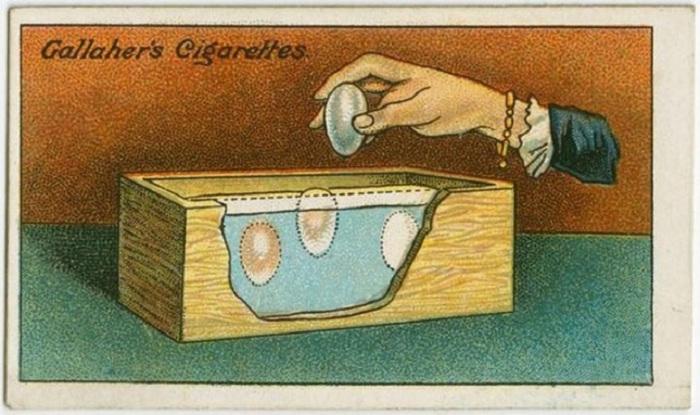 Погрузить яйца в соль целиком, что позволит сохранить их в течение долгого времени. Главное, чтобы к яйцу не поступал воздух!