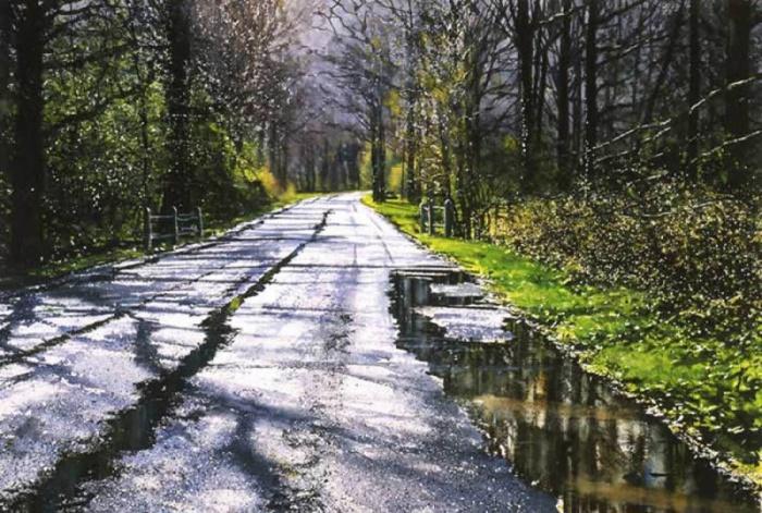 Удивительное спокойствие и красота лесной дороги после дождя.