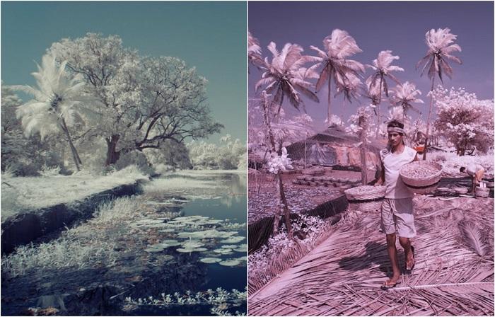 Инфракрасные фотографии Гоа в межсезонье.
