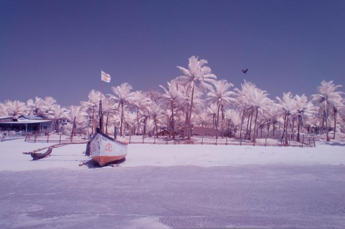 Бенаулим – тихий и просторный пляж, на котором среди пальм расположены маленькие уютные кафе.