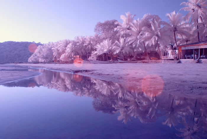 Пляж Палолема – это пальмы, растущие вдоль береговой линии, и неглубокое лазурное море.