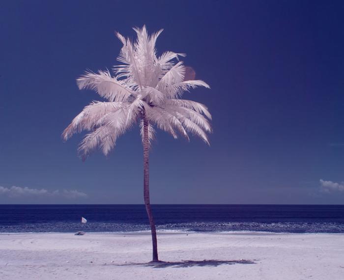 Использование  специального фильтра для цифрового фотоаппарата позволяет создавать невероятные снимки.