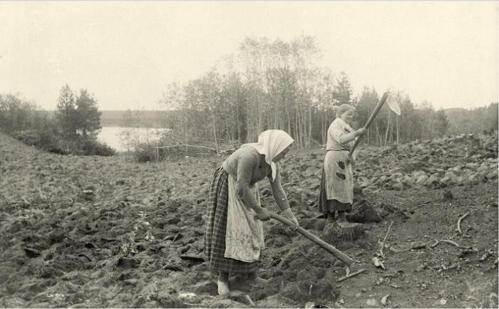 Женщины обрабатывают землю. Вуолы.