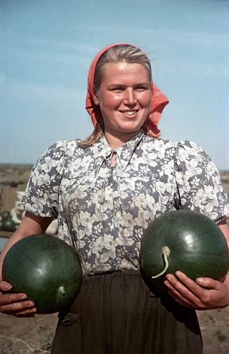 Работница на сборке урожая в Алтайском крае.