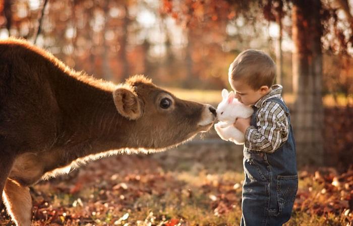 Кролик, который дружит со всеми животными на ферме.