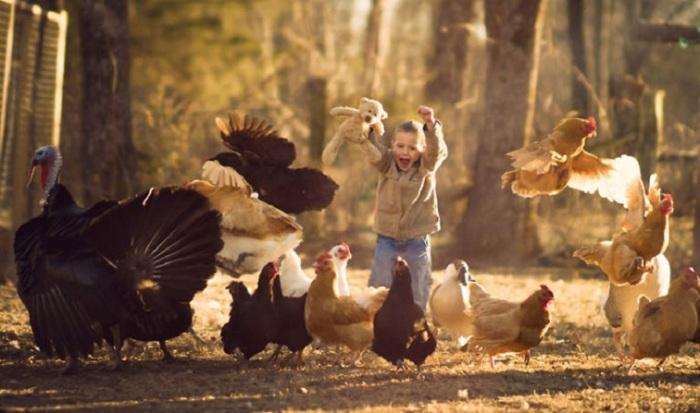 Беззаботное детство на ферме вместе с домашними питомцами.