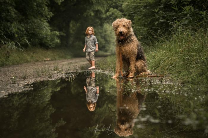 Прогулка по лесу после дождя. Автор фотографии: Адриан К. Мюррей (Adrian C. Murray).