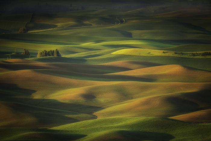 Холмистые просторы. Автор фотографии: Лара Koo (Lara Koo).