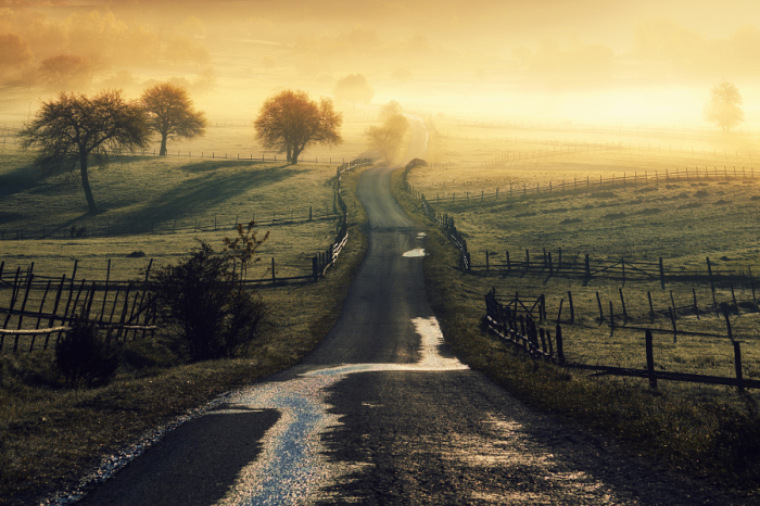 Проселочная дорога через поля. Автор фотографии: Аднан Бубало (Adnan Bubalo).