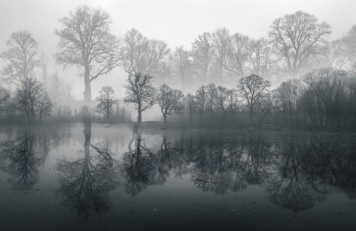 Декабрьское утро в Польше. Фотограф - Malgorzata Walkowska.