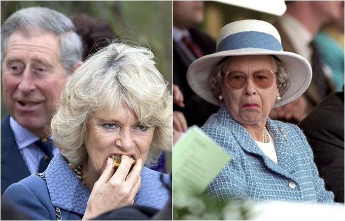 Забавные снимки королевской семьи.