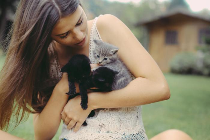 Любовь и нежность к маленьким котятам. Автор фотографии: Давид Олькарный (David Olkarny).