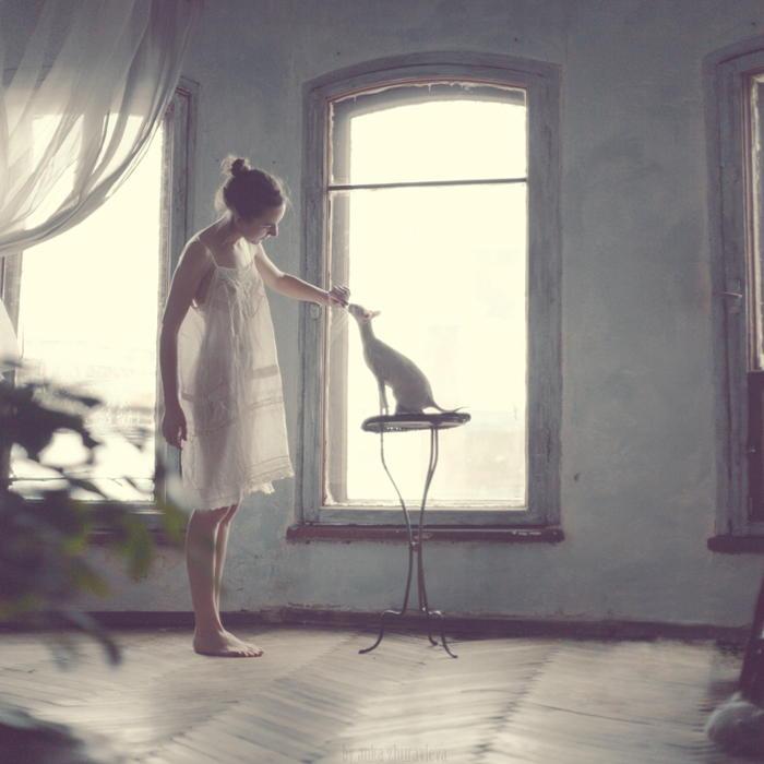 Утренняя дрессировка кошки. Автор фотографии: Анка Журавлева (Anka Zhuravleva).