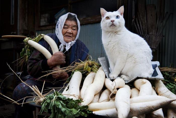 Прекрасная дружба бабушки Мисы с кошкой, которую она нашла у себя в сарае.