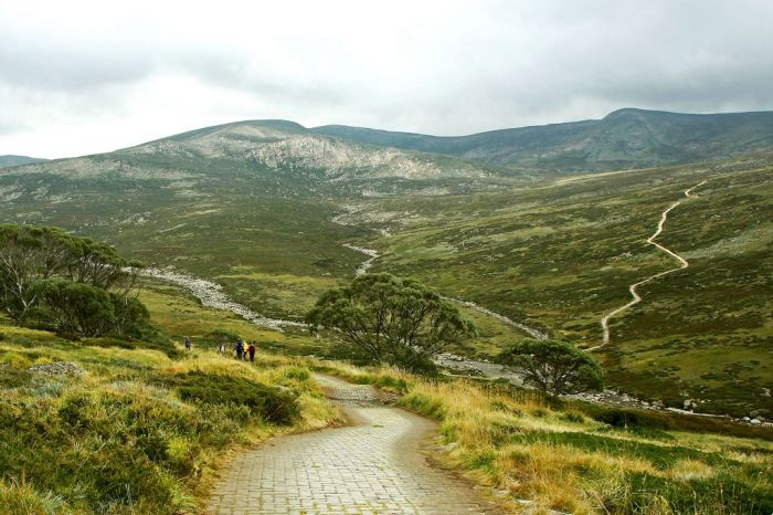 Самая высокая точка Австралии весьма популярна среди туристов, которые регулярно поднимаются на ее вершину посредством подъемника, а для любителей пеших прогулок предусмотрена прекрасно оборудованная дорога.