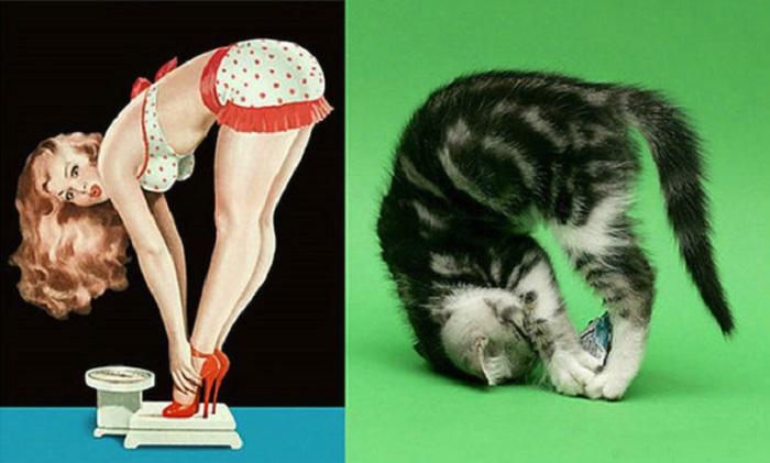 Содаты Второй Мировой войны тоже собирали картинки с изображением полуобнаженных девиц, как фантики из под конфет.