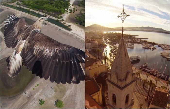 Удивительные снимки, сделанные с помощью дронов.