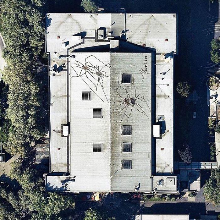 Трехмерные изображения гигантских пауков на крыше оружейного склада выполнены художником Мэрлином Питерсоном и расположены под смотровой башней Спейс-Нидл.