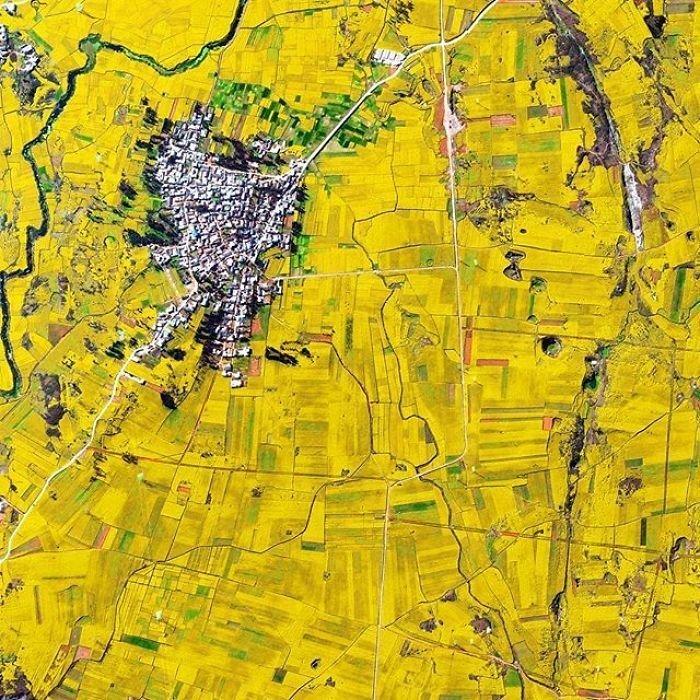 Золотые поля цветущего рапса, масло которого используется в пищевой промышленности и для получения биотоплива, в начале весны полностью преображают горный ландшафт.