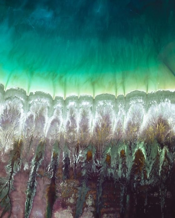 Мангровые болота, соединенные приливными ручьями с океаном, создают удивительный, неповторимый и постоянно меняющийся узор.