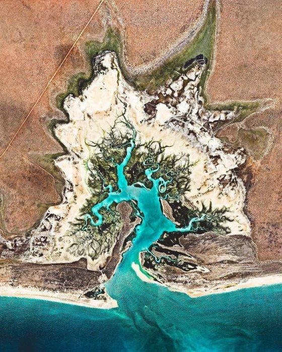 Охраняемое устье, благодаря уникальным водам, известно своими моллюсками пинктада максима – самыми большими жемчужными устрицами в мире.
