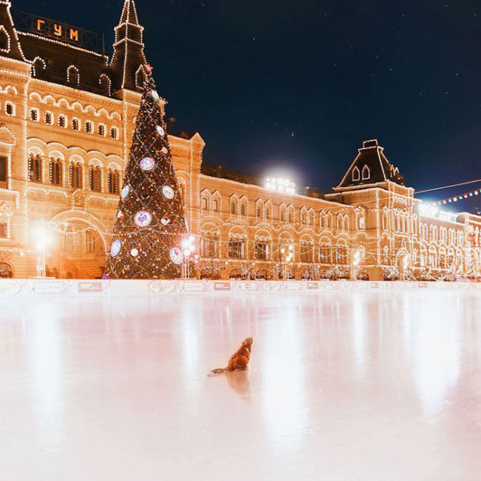 Особенная и неповторимая красота Москвы.