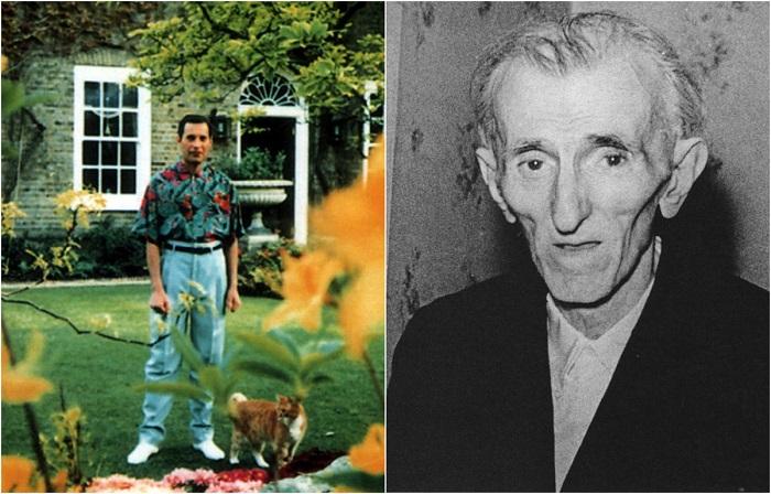 Последние фотографии знаменитых людей.