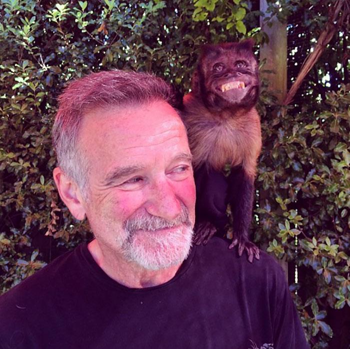 В свой день рождения американский актер выложил в Инстаграм фотографию с обезьянкой Кристал на плече, а через 20 дней совершил самоубийство, не выдержав борьбы с болезнью Паркинсона.