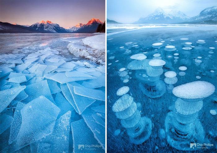Земля погрузилась в ледниковый период. Автор фотографии: Phillips Chip.