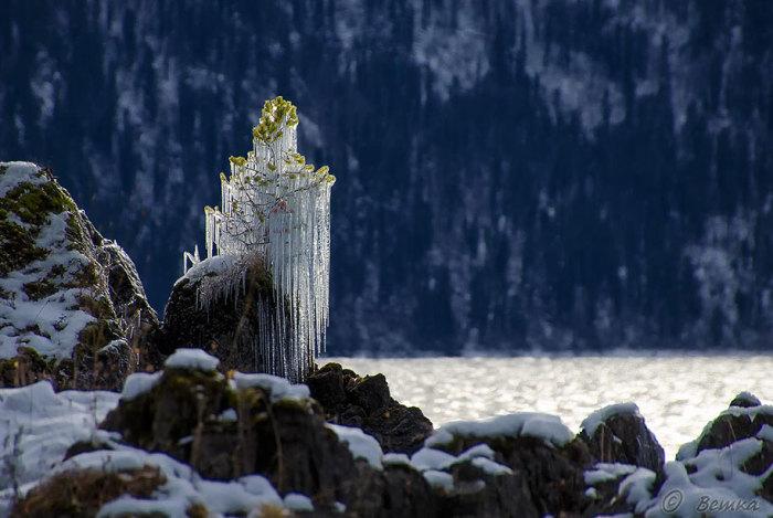 Хрустальные сосульки во владениях Снежной королевы. Автор фотографии: Svetlana Shupenko.