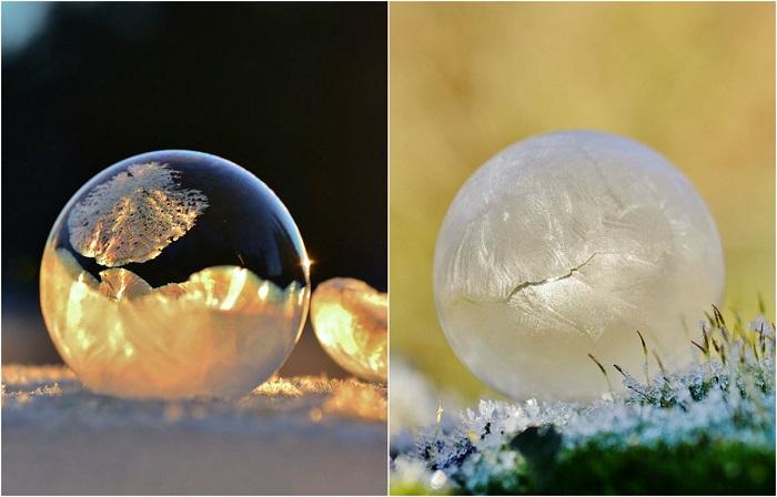 Магический ледяной шар для предсказаний даст ответ на любой ваш вопрос. Автор фотографии: Angela Kelly.