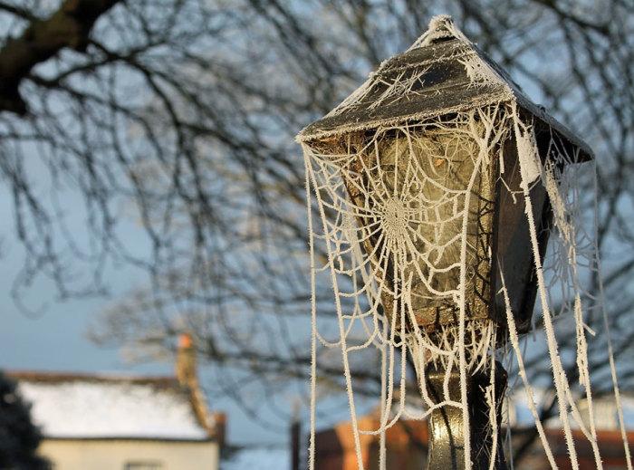 Чудо мастерица-зима вяжет белыми нитками и крючком. Автор фотографии: Robert Felton.
