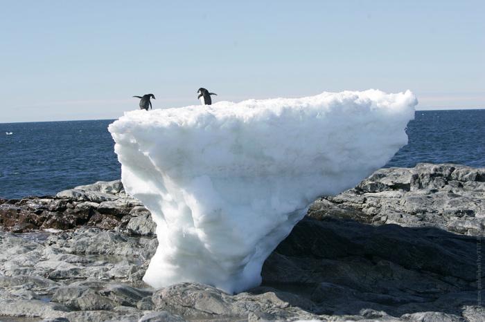 Из-за тающего льда обнажилась скалистая береговая линия на мысе Денисон в заливе Содружества, находящегося в  Восточной Антарктиде.