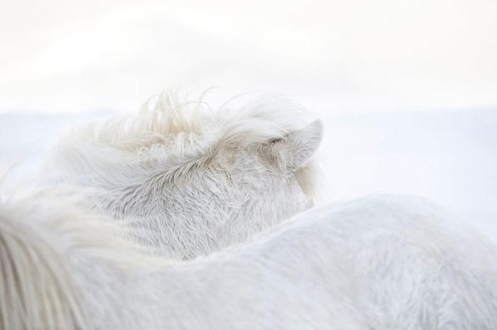 Самым сложным испытанием для Дрю Доггета стала непредсказуемая погода Исландиии, из-за которой съемки часто приходилось переносить.
