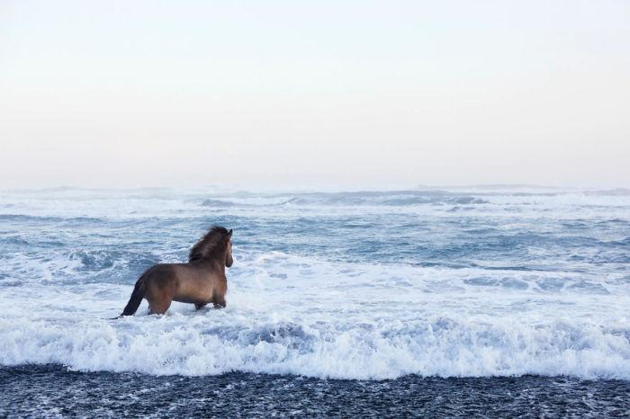Зимняя Исландия привлекла фотографа Дрю Доггета своими сюрреалистическими и захватывающими пейзажами.