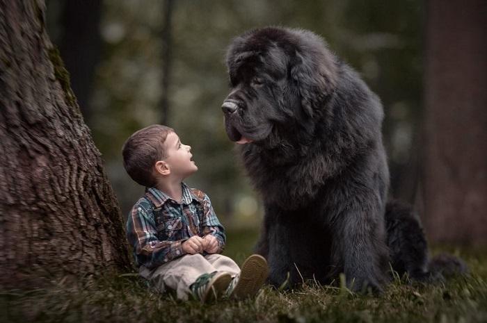 Весь мир может подождать, когда заглядываешь в преданные глаза своего друга.