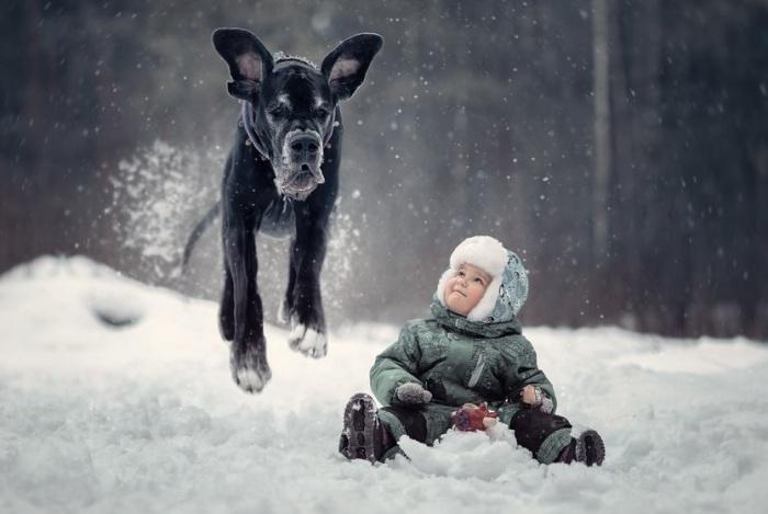 Ушастая няня так и прыгает от снежного удовольствия.