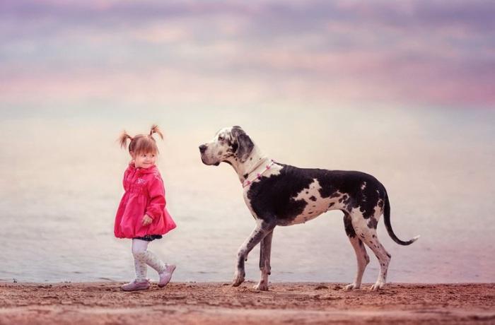 Наслаждаясь морским пейзажем, медленно прогуливаются берегом девочка и немецкий дог.