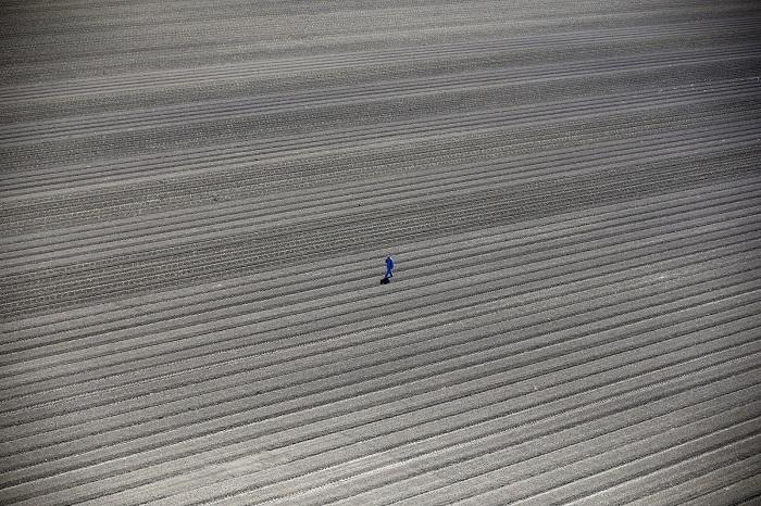 Рабочий идёт по фермерским полям в Лос Баносе. Фотограф: Люси Николсон (Lucy Nicholson), Великобритания.
