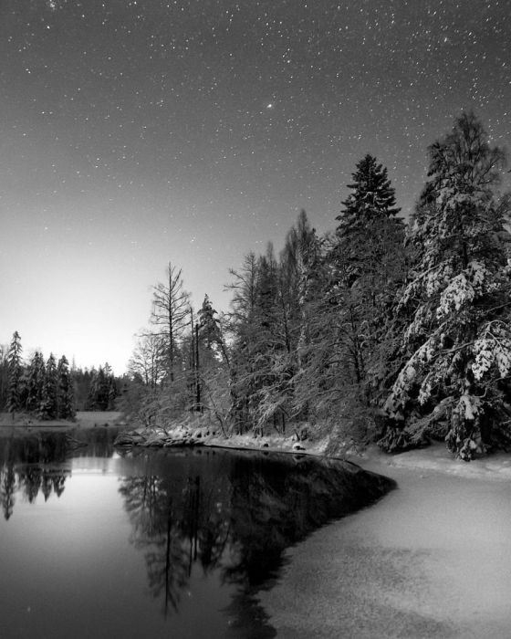Миллионы звезд светят в морозную ночь.