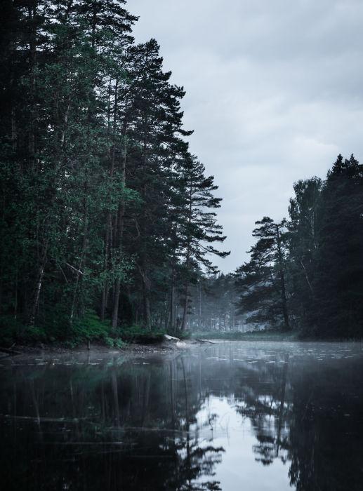 Из-за поворота горной реки приближается белая мгла.
