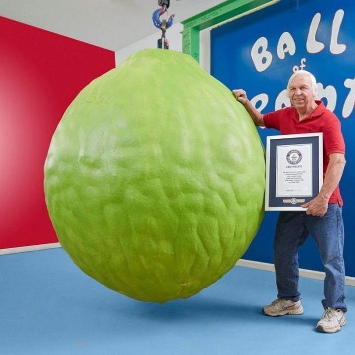 Майкл Кармайкл и его жена Гленда в течение 34 лет ежедневно наносили по 2 слоя краски на бейсбольный шарик, который на данный момент весит 1587 кг и составляет 57 см в диаметре.