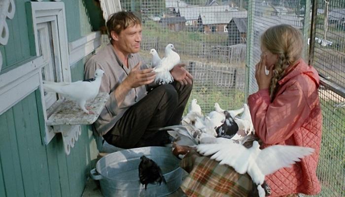 Василий очень любил своих птиц и относился к ним как к детям. /Фото:on-dekstop.com